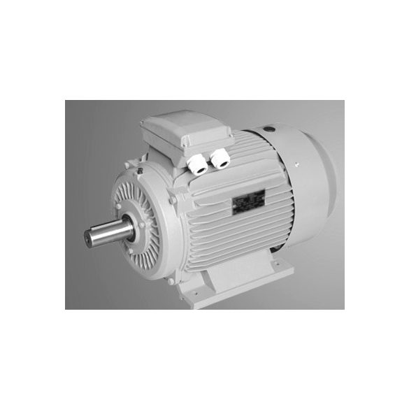Villanymotor 15AA100L24B3 3 kW talpas