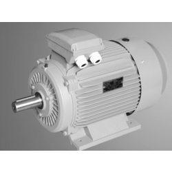 Villanymotor 15AA80M24B3 0,75 kW talpas